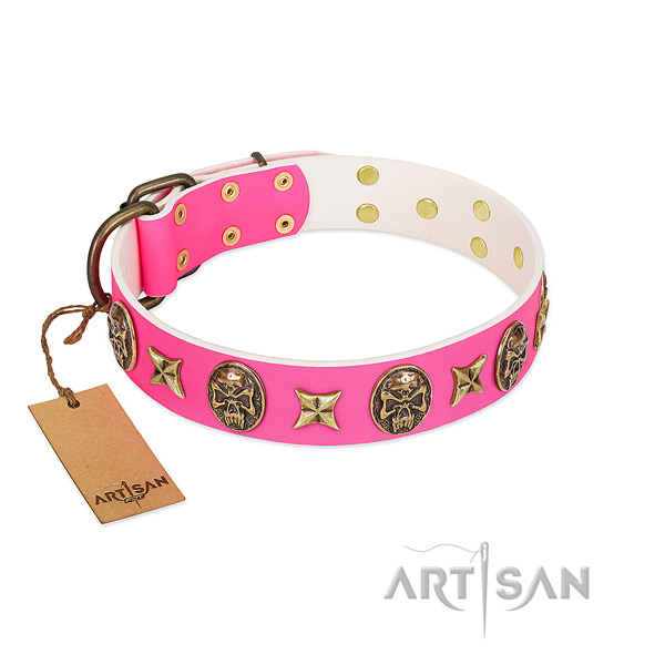 Full grain natural leather dog collar with strong adornments
