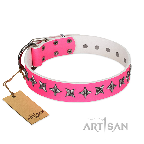 Top notch genuine leather dog collar with unique studs