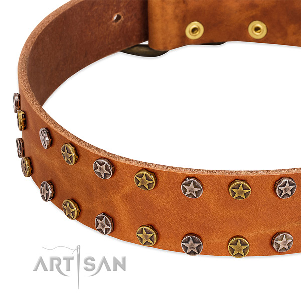 Daily walking full grain genuine leather dog collar with extraordinary decorations