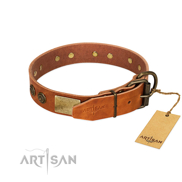 Rust-proof hardware on leather collar for fancy walking your pet