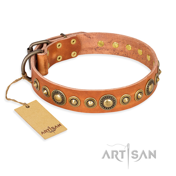 Reliable full grain leather collar created for your canine