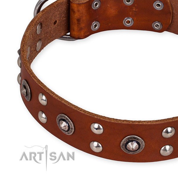Full grain leather collar with corrosion proof D-ring for your impressive doggie