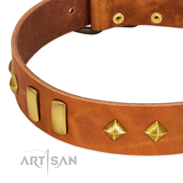 Daily use full grain genuine leather dog collar with inimitable studs