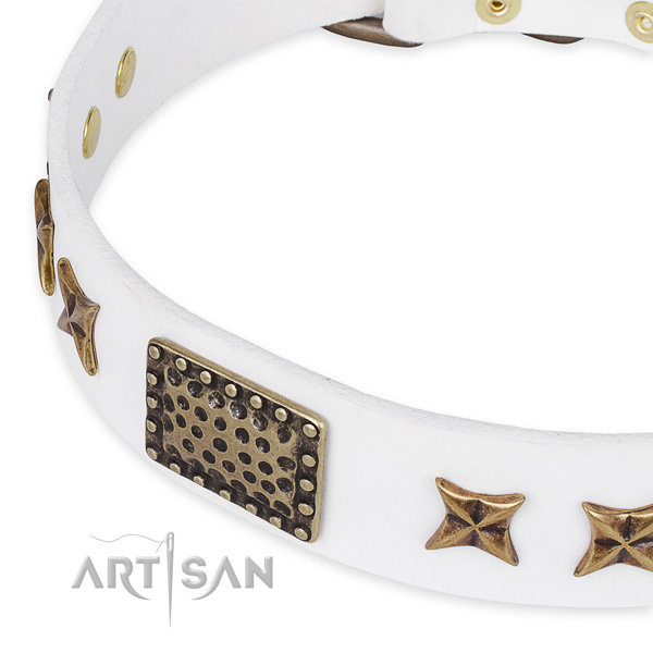 Full grain natural leather collar with corrosion resistant fittings for your stylish pet