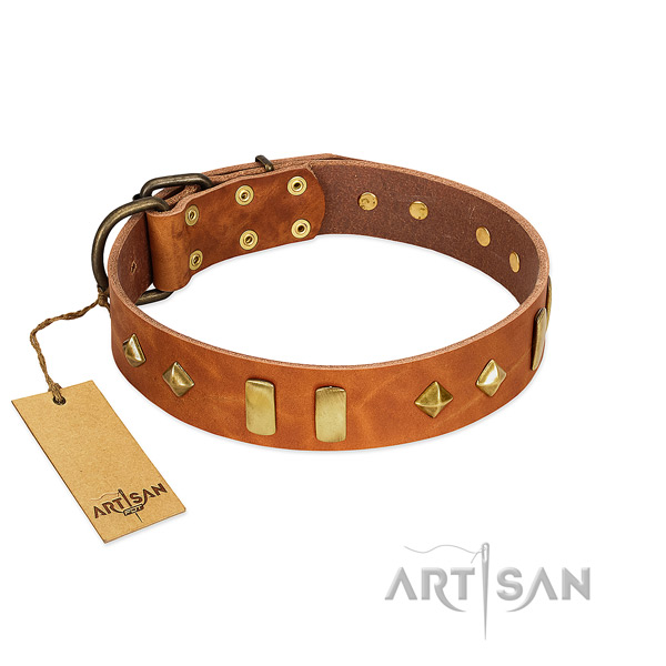 Fancy walking top notch natural leather dog collar with embellishments