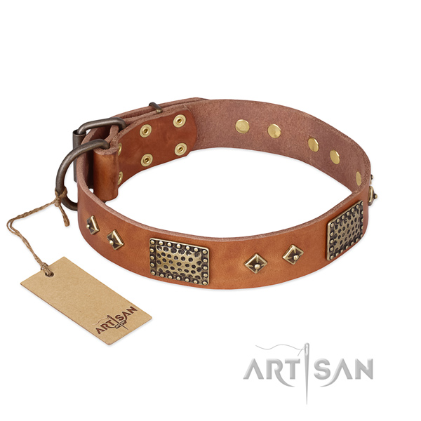 Comfortable full grain leather dog collar for everyday use