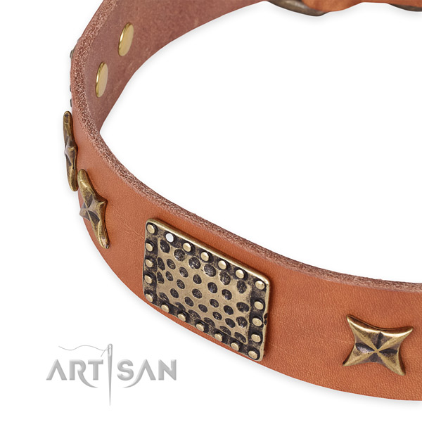 Full grain natural leather collar with corrosion proof fittings for your lovely doggie