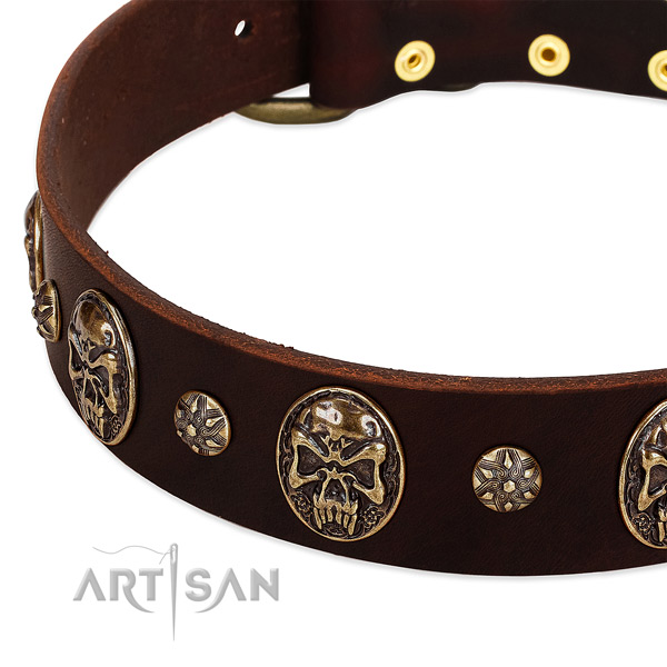 Rust resistant fittings on full grain natural leather dog collar for your four-legged friend