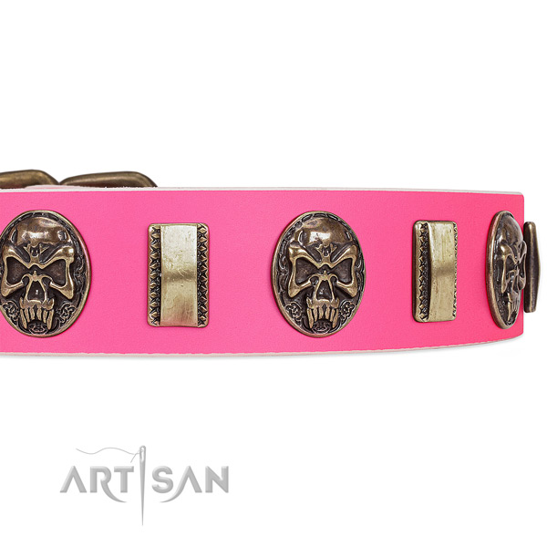 Rust-proof studs on genuine leather dog collar for your four-legged friend
