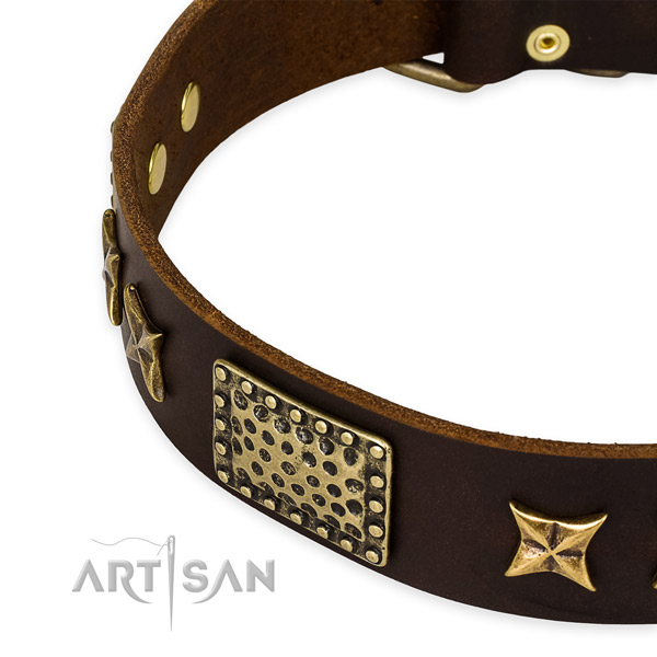 Genuine leather collar with rust resistant hardware for your stylish dog
