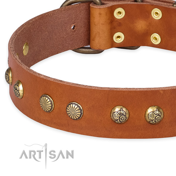 Natural genuine leather collar with rust-proof traditional buckle for your beautiful four-legged friend