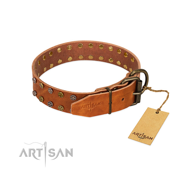 Daily use full grain genuine leather dog collar with exceptional studs