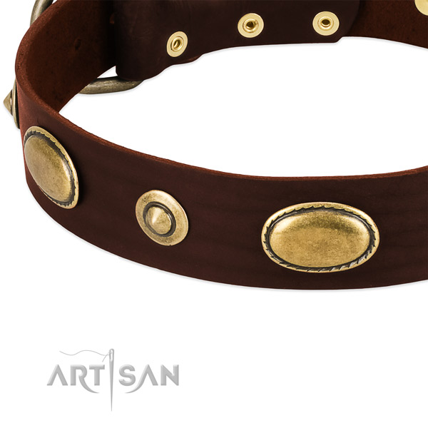 Corrosion resistant buckle on full grain leather dog collar for your four-legged friend
