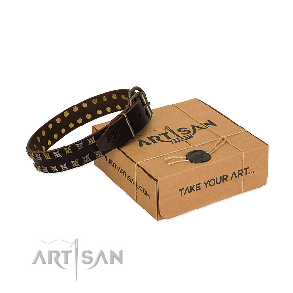 Top rate full grain natural leather dog collar crafted for your four-legged friend