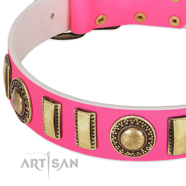Flexible leather dog collar for your stylish canine