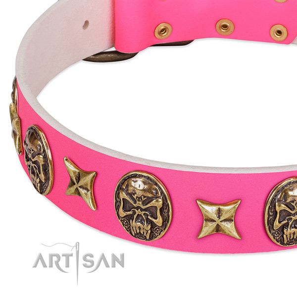 Leather dog collar with exquisite studs