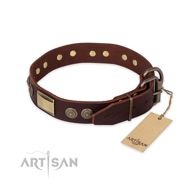 Corrosion proof traditional buckle on full grain leather collar for fancy walking your pet