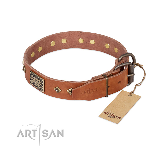 Genuine leather dog collar with durable D-ring and embellishments