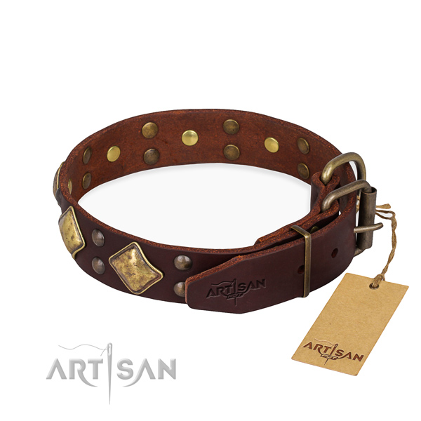 Leather dog collar with extraordinary rust resistant studs