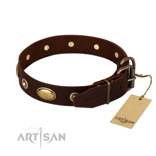 Strong adornments on full grain natural leather dog collar for your dog