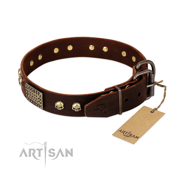 Rust-proof fittings on everyday walking dog collar