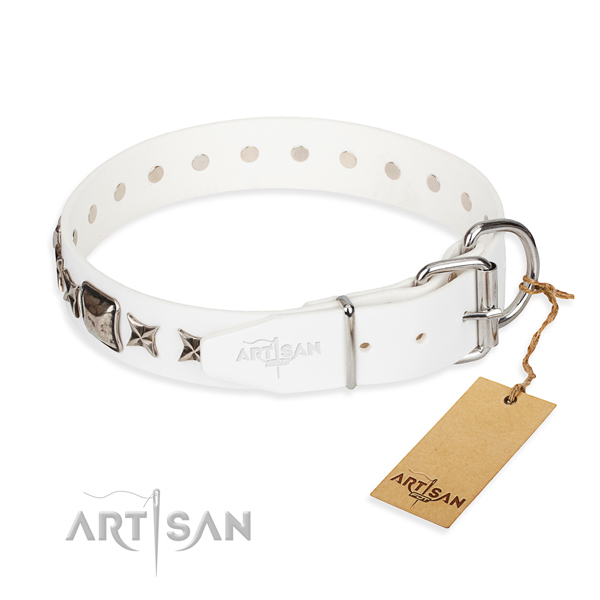 Durable adorned dog collar of leather