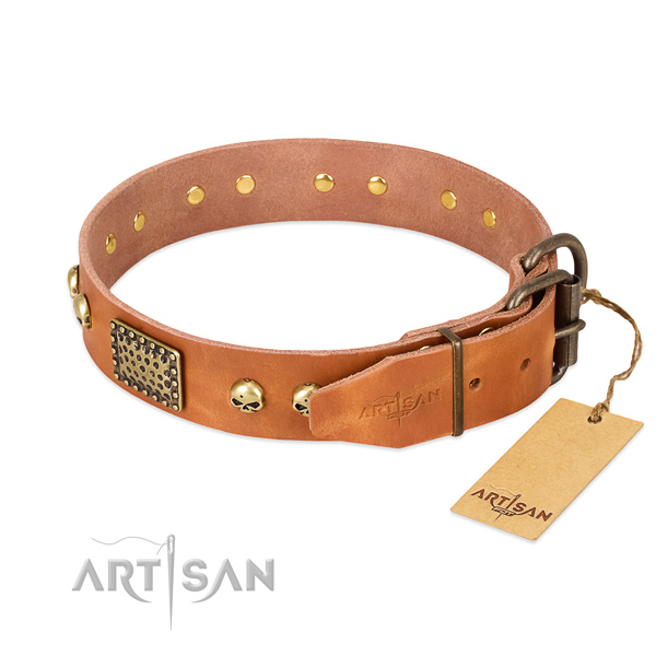 Reliable embellishments on basic training dog collar