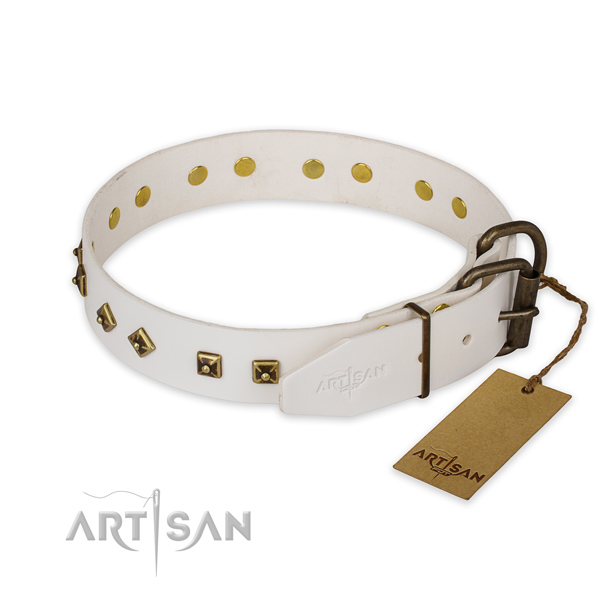 Corrosion proof buckle on leather collar for basic training your canine