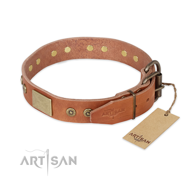 Rust-proof D-ring on leather collar for stylish walking your dog