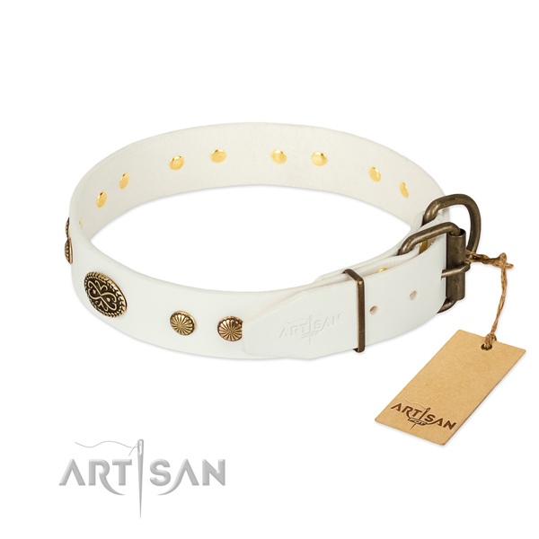 Rust-proof adornments on genuine leather dog collar for your canine