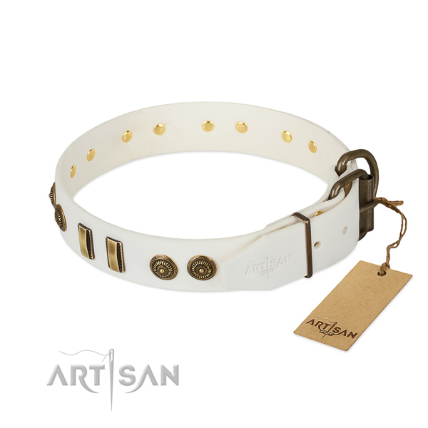 Corrosion proof D-ring on natural leather dog collar for your pet
