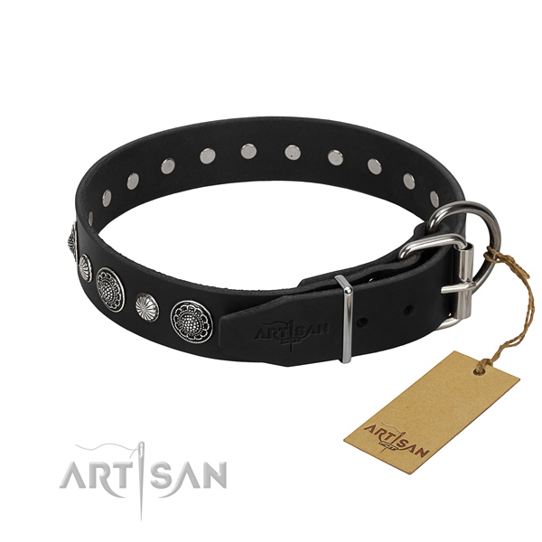 Quality full grain leather dog collar with amazing adornments