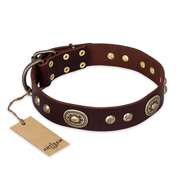 """Breath of Elegance"" FDT Artisan Decorated with Plates Brown Leather Great Dane Collar"
