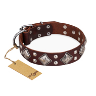 """King of Grace"" FDT Artisan Stylish Leather Great Dane Collar with Old Silver-Like Plated Decorations"