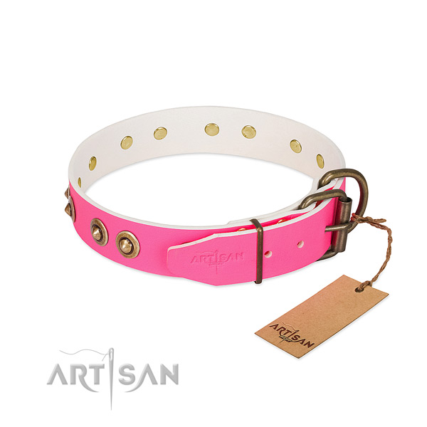 Leather dog collar with corrosion resistant buckle and decorations