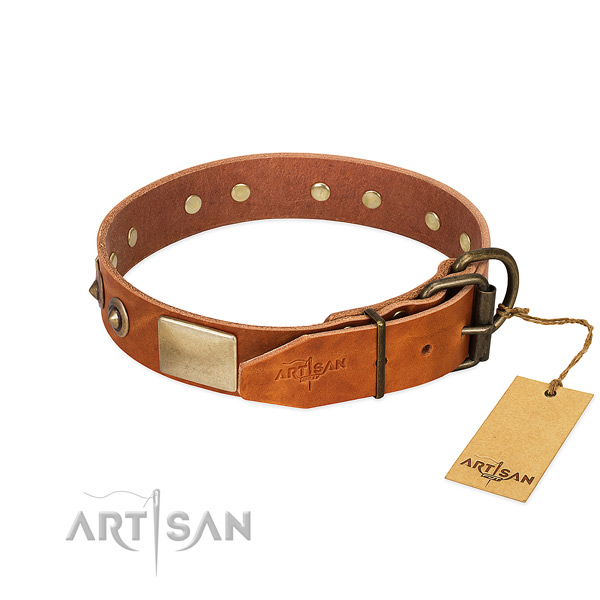 Reliable fittings on basic training dog collar