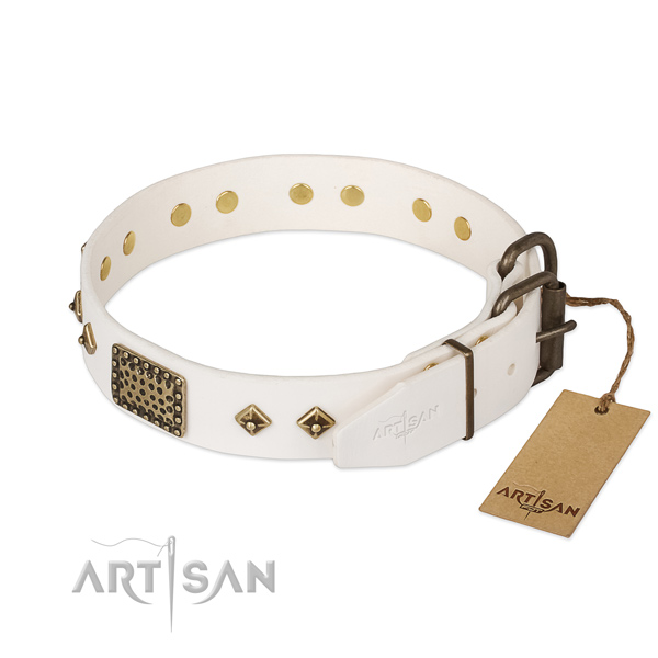 Leather dog collar with rust resistant hardware and embellishments