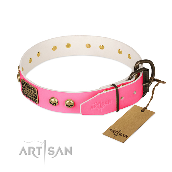 Rust resistant embellishments on basic training dog collar