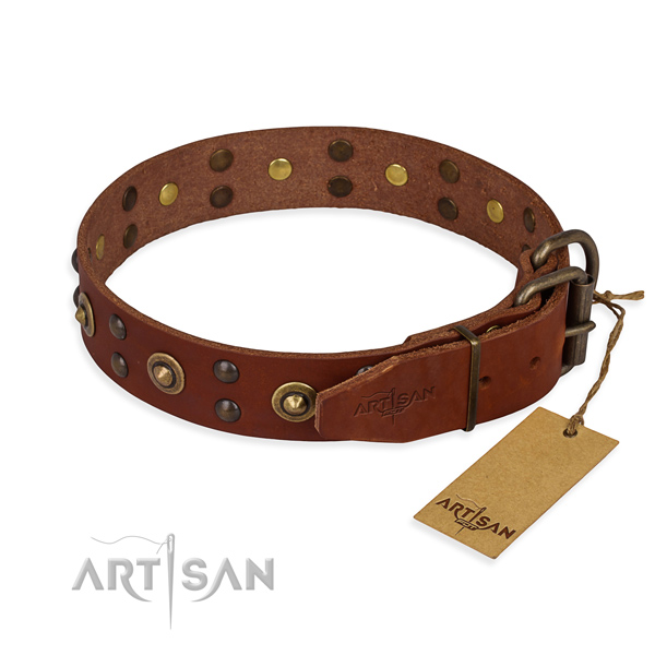 Reliable hardware on genuine leather collar for your attractive canine