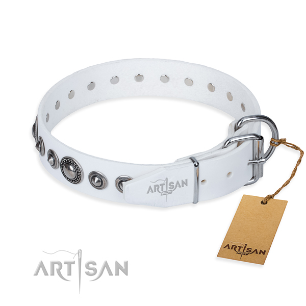 Full grain leather dog collar made of soft material with durable adornments