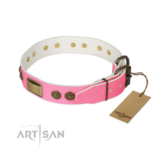 Rust resistant embellishments on daily use dog collar