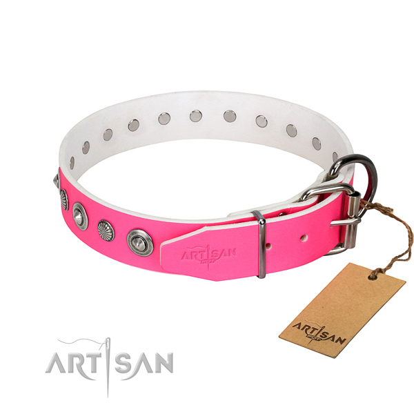 Fine quality full grain genuine leather dog collar with inimitable embellishments