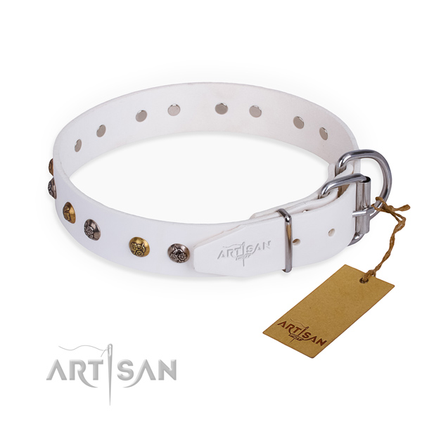Natural leather dog collar with impressive rust resistant embellishments