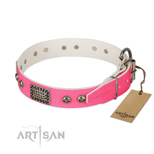 Rust-proof traditional buckle on daily use dog collar