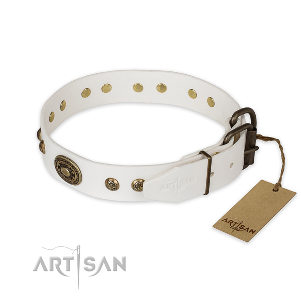 Strong traditional buckle on full grain genuine leather collar for walking your four-legged friend