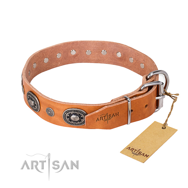 Top notch full grain leather dog collar handmade for stylish walking