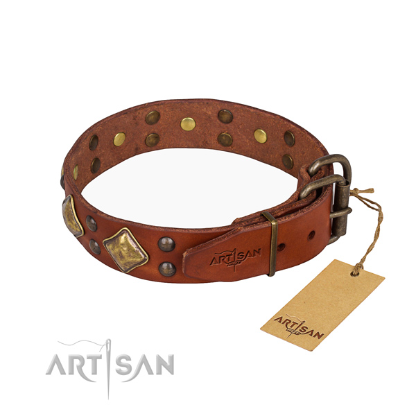 Natural leather dog collar with stylish reliable adornments