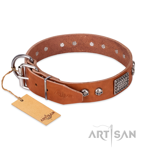 Corrosion resistant decorations on daily use dog collar