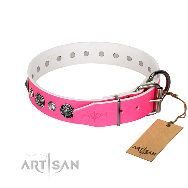 Quality leather dog collar with rust resistant D-ring