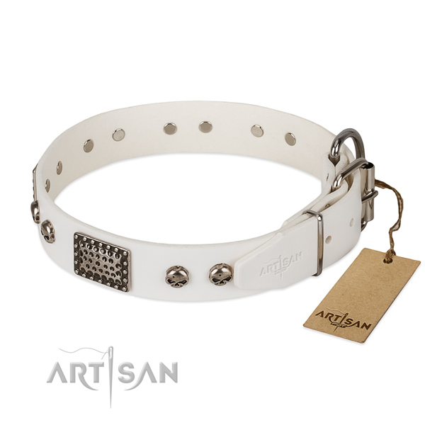 Reliable traditional buckle on comfortable wearing dog collar